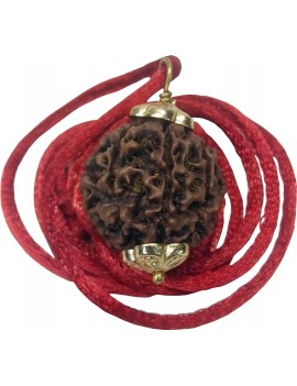 Eight Faced/8 Mukhi Rudraksh Pendant (Bead Size 23 To 25 mm)